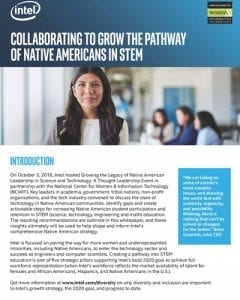Collaborating to Grow the Pathway of Native Americans in STEM: White Paper