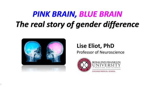 "2018 NCWIT Summit - ""Pink Brain"